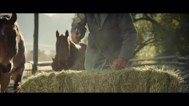bale stock footage | Nimia com