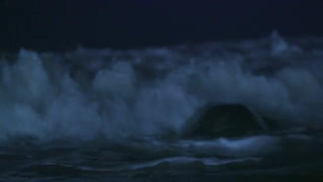 bury stock footage | Nimia com